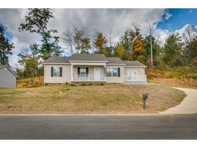 2322 Serenity Court, Kingsport, TN 37660 (MLS #424692) :: Conservus Real Estate Group