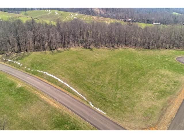 000 Deer Run Court, Butler, TN 37640 (MLS #426868) :: Conservus Real Estate Group