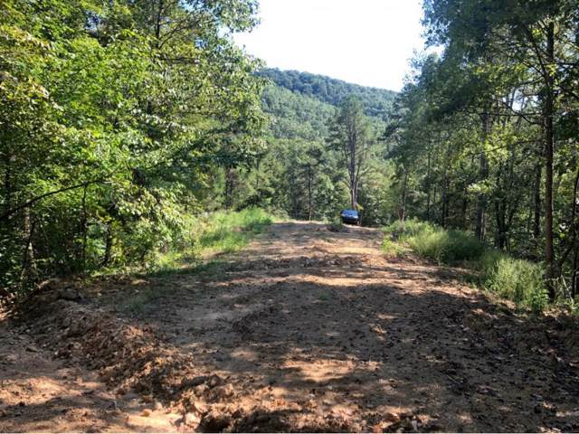 TBD Early Branch Road, Rogersville, TN 37857 (MLS #426951) :: Highlands Realty, Inc.