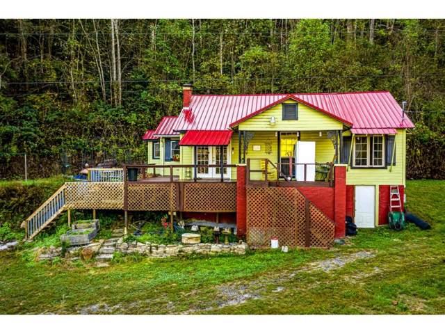 9950 Chestnut Ridge Road, Eidson, TN 37731 (MLS #428031) :: Conservus Real Estate Group
