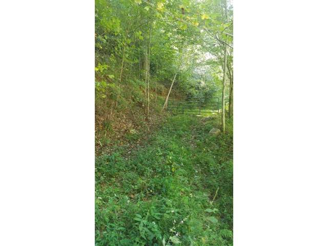 TBD Poplar Creek Road, Green Mountain, NC 28740 (MLS #429086) :: Highlands Realty, Inc.