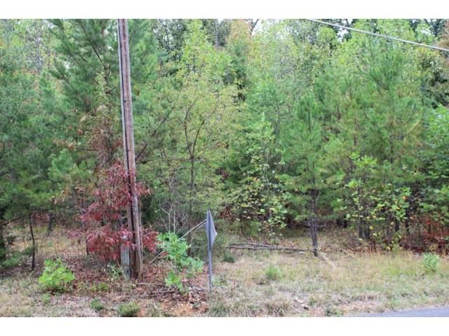 TBD Oak Grove, Rogersville, TN 37857 (MLS #429170) :: Highlands Realty, Inc.