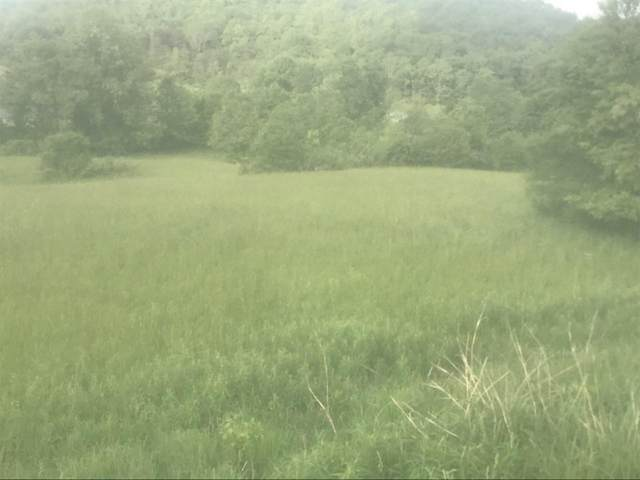 710 Gap Creek Road, Elizabethton, TN 37643 (MLS #9904934) :: The Lusk Team