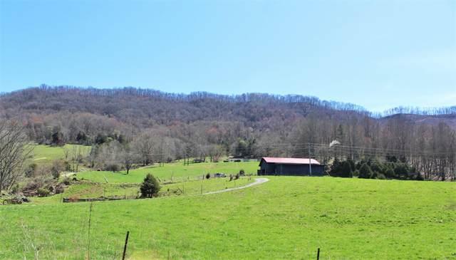329 Mountain Jewel Trail, Jonesville, VA 24263 (MLS #9906307) :: Highlands Realty, Inc.