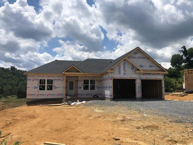 34 Alden Court, Gray, TN 37615 (MLS #9909092) :: Red Door Agency, LLC