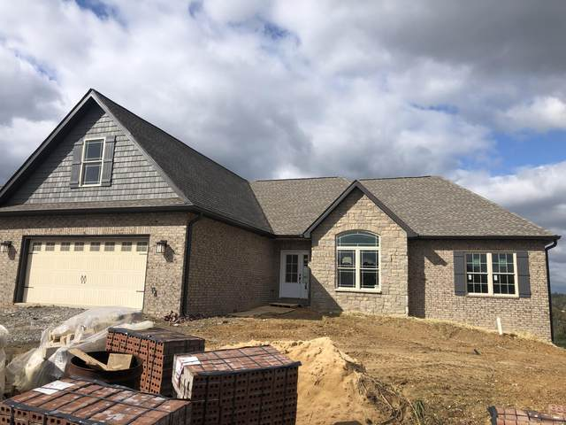 1132 Panoramic Vista, Gray, TN 37615 (MLS #9912099) :: Red Door Agency, LLC