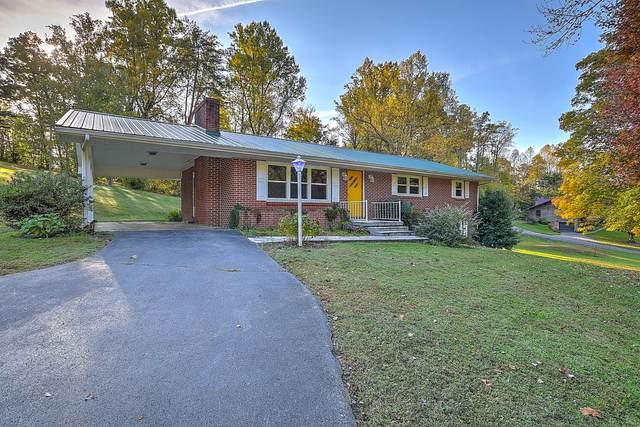 480 Bear Hollow Road, Rogersville, TN 37857 (MLS #9914469) :: Bridge Pointe Real Estate