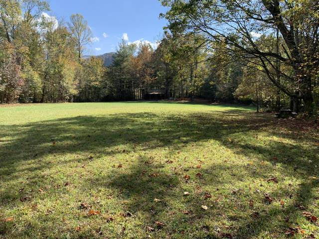 00 Horse Creek Park Road, Chuckey, TN 37641 (MLS #9914799) :: Highlands Realty, Inc.