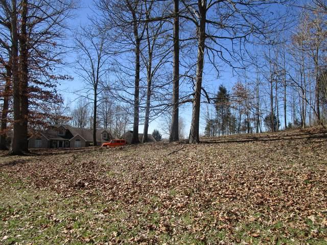 Tbd Glen Haven Drive, Bluff City, TN 37618 (MLS #9919126) :: Conservus Real Estate Group