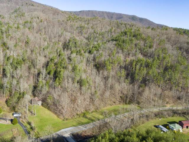 Tbd Old Asheville Highway, Erwin, TN 37650 (MLS #9920173) :: Conservus Real Estate Group