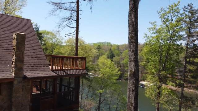 23233 Moonshine Aka Lake Pointe Dr. Drive, Abingdon, VA 24211 (MLS #9920241) :: Conservus Real Estate Group