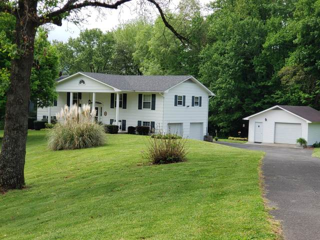 119 Crockett Lane, Elizabethton, TN 37643 (MLS #9922292) :: Bridge Pointe Real Estate
