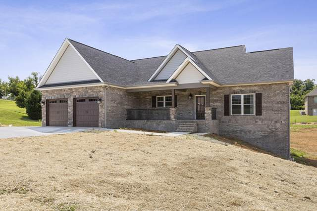 215 Lakefront Lane, Bluff City, TN 37618 (MLS #9923256) :: Conservus Real Estate Group