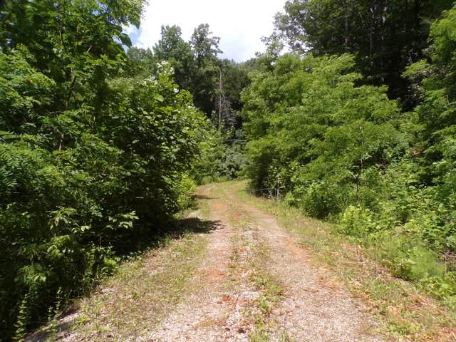 4095 Highway 321, Bulter, TN 37640 (MLS #9924196) :: Conservus Real Estate Group