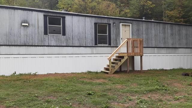 284 Carr Hollow Road, Bluff City, TN 37618 (MLS #9929507) :: Red Door Agency, LLC