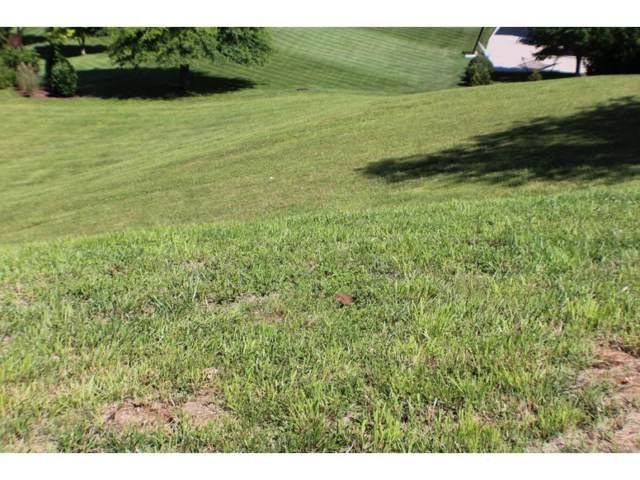 Lot 62 Ambridge Drive, Kingsport, TN 37664 (MLS #394309) :: The Lusk Team