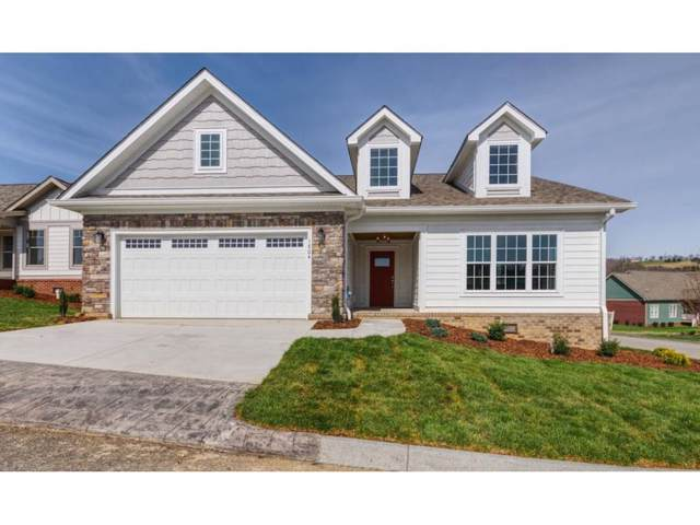 1804 Cayman Court, Kingsport, TN 37664 (MLS #416538) :: Conservus Real Estate Group