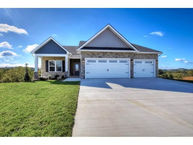 3337 Murrayfield Way, Kingsport, TN 37664 (MLS #422665) :: Conservus Real Estate Group