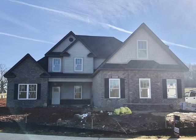 610 Harbor Approach, Johnson City, TN 37601 (MLS #9910868) :: Conservus Real Estate Group