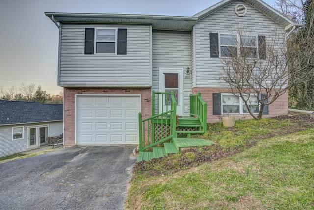 205 Copper Hill Drive, Johnson City, TN 37601 (MLS #9916092) :: Highlands Realty, Inc.