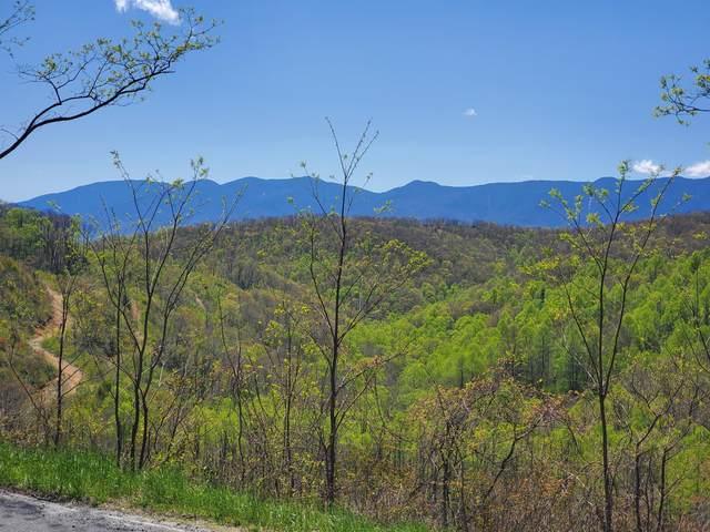 TBD Emerald Mine Road, Little Switzerland, NC 28749 (MLS #417020) :: Tim Stout Group Tri-Cities