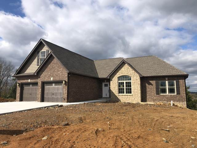 1154 Panoramic Vista, Gray, TN 37615 (MLS #9912100) :: Red Door Agency, LLC