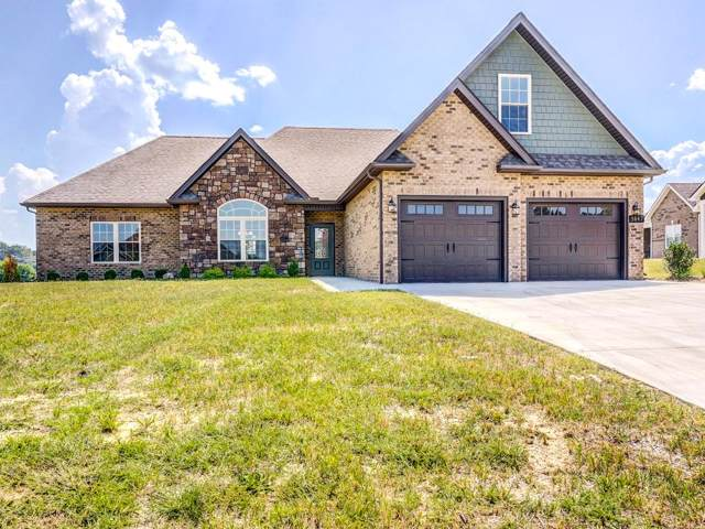 3047 Allison Meadows, Piney Flats, TN 37686 (MLS #418823) :: Conservus Real Estate Group