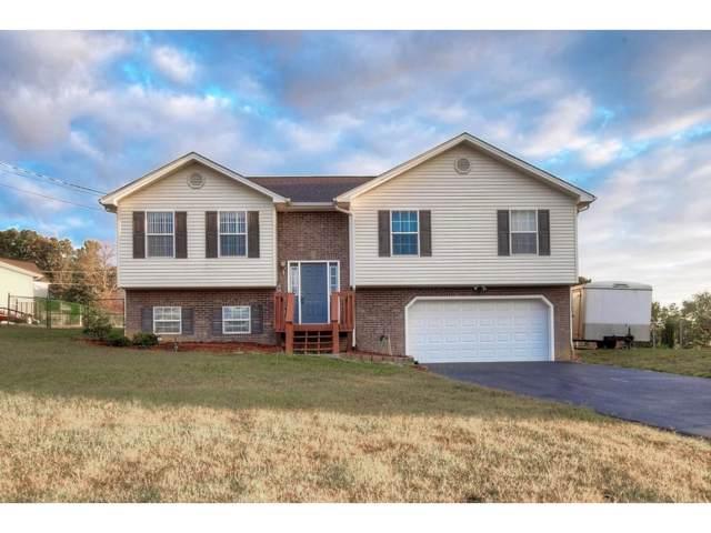1111 Daisy Lane, Jonesborough, TN 37659 (MLS #424394) :: Highlands Realty, Inc.
