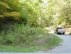 0000 Golden View Drive, Abingdon, VA 24211 (MLS #270453) :: Conservus Real Estate Group