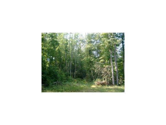 6 Pfeiffer Ridge Road, Elizabethton, TN 37643 (MLS #314921) :: Highlands Realty, Inc.