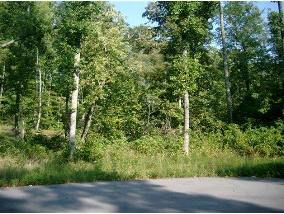 5 Pfeiffer Ridge Road, Elizabethton, TN 37643 (MLS #315120) :: Highlands Realty, Inc.
