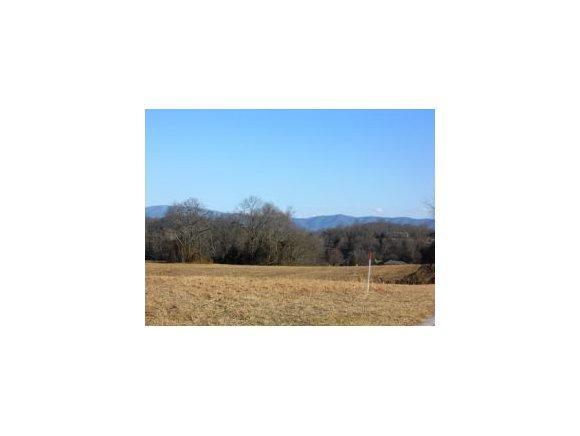 101 Bill Road, Piney Flats, TN 37686 (MLS #315135) :: Highlands Realty, Inc.
