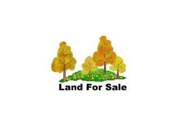 Lot #13 Fox Ridge Dr., Mt Carmel, TN 37645 (MLS #353272) :: Highlands Realty, Inc.