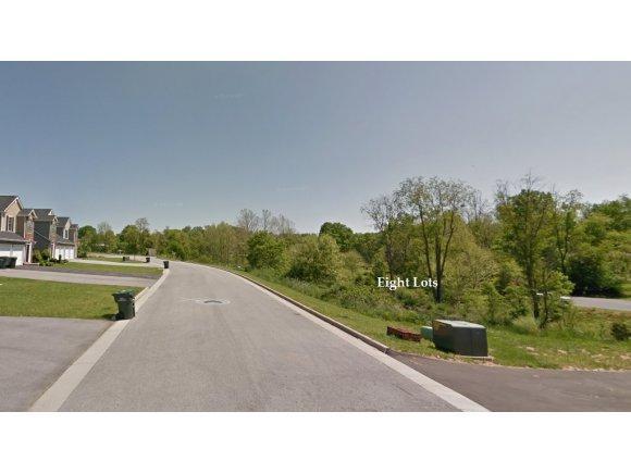 0 Lavinia, Bristol, VA 24201 (MLS #356310) :: Conservus Real Estate Group