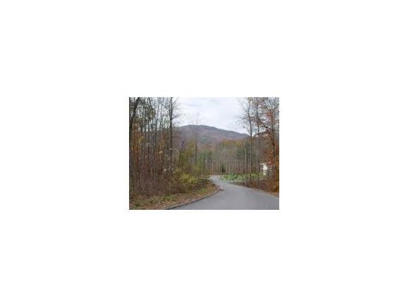 LOT 28 Sage Drive, Johnson City, TN 37601 (MLS #359254) :: Highlands Realty, Inc.
