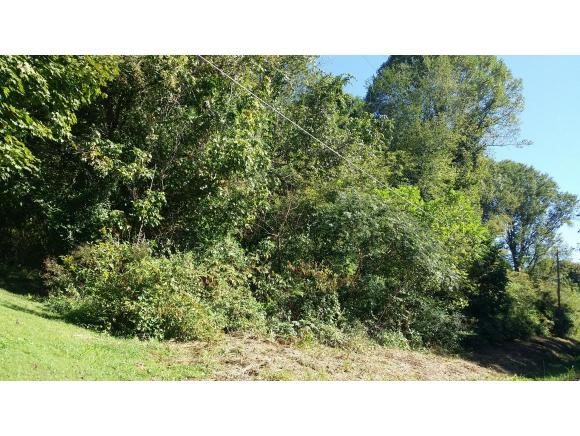 000 Woodland St, Rogersville, TN 37857 (MLS #370299) :: Conservus Real Estate Group