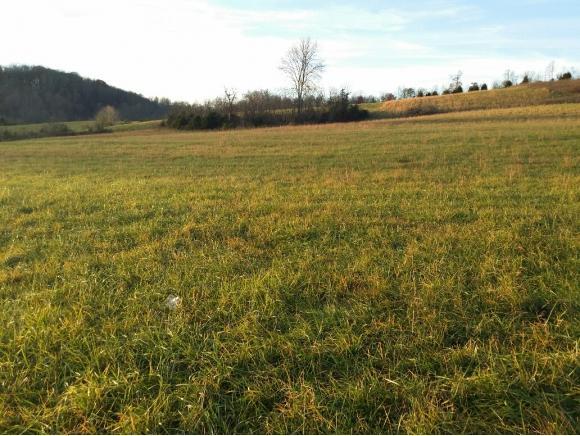 000 Clinch Valley, Rogersville, TN 37857 (MLS #370800) :: Highlands Realty, Inc.