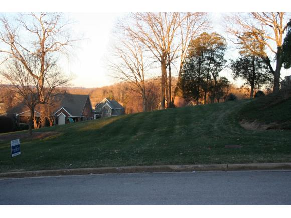 205 Willows Ridge Court, Johnson City, TN 37601 (MLS #372116) :: Highlands Realty, Inc.