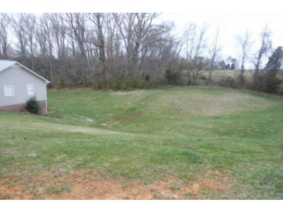 399 Appian Way, Greeneville, TN 37743 (MLS #374879) :: Highlands Realty, Inc.