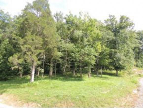 204 Walnut Bend Drive, Whitesburg, TN 37891 (MLS #375031) :: Highlands Realty, Inc.