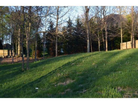3706 Brown's Mill Rd, Johnson City, TN 37615 (MLS #375245) :: Highlands Realty, Inc.