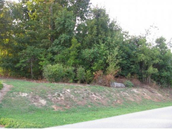 Lot # 11 Polly Anna Drive, Mosheim, TN 37818 (MLS #375862) :: Highlands Realty, Inc.