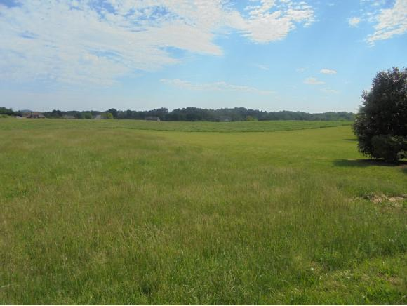 Lot 1 Waterstone Circle, Greeneville, TN 37745 (MLS #377362) :: Highlands Realty, Inc.