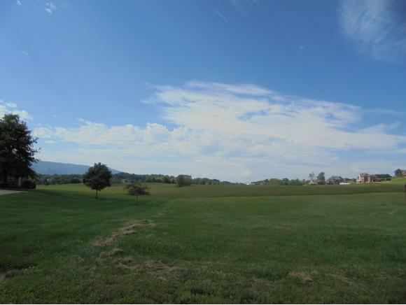 Lot 3 Waterstone Circle, Greeneville, TN 37745 (MLS #377366) :: Highlands Realty, Inc.