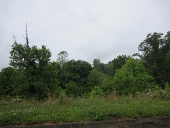413 Grace Hills Dr, Blountville, TN 37617 (MLS #377370) :: Highlands Realty, Inc.