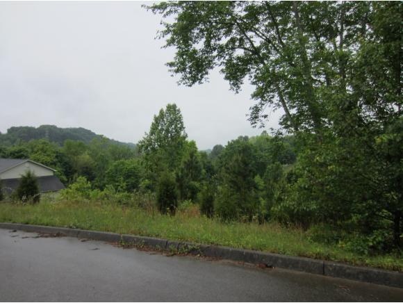 417 Grace Hills Drive, Blountville, TN 37617 (MLS #377374) :: Highlands Realty, Inc.