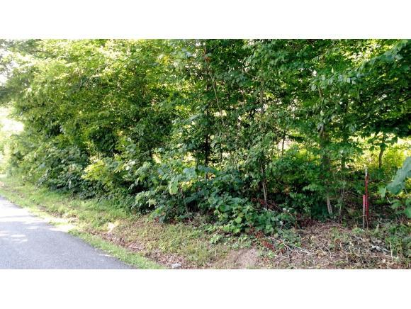 TBD Kincheloe Road, Fall Branch, TN 37656 (MLS #379944) :: Highlands Realty, Inc.