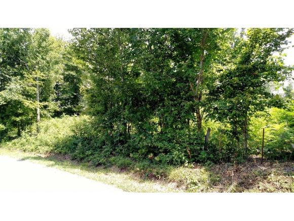 TBD Kincheloe Road, Fall Branch, TN 37656 (MLS #379945) :: Highlands Realty, Inc.