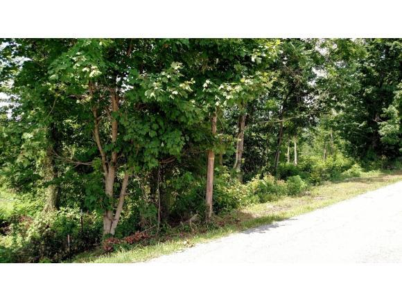 TBD Townsend Road, Fall Branch, TN 37656 (MLS #379950) :: Highlands Realty, Inc.