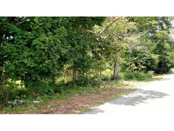TBD Townsend Road, Fall Branch, TN 37656 (MLS #379952) :: Highlands Realty, Inc.